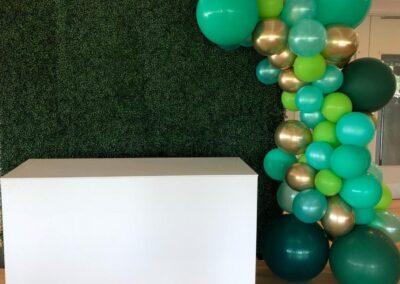 Balloon Arch Virginia